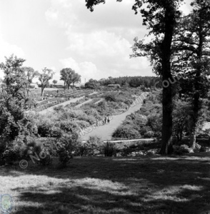 Northern Horticultural Society Gardens, 1960
